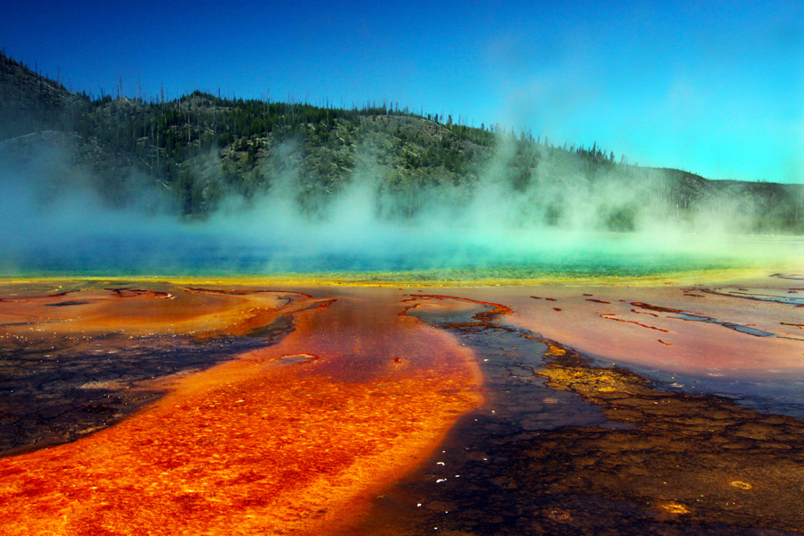 Yellowstone National Park, WY:Bacteria pool with steaming geysor :  : Christopher Davies Photography