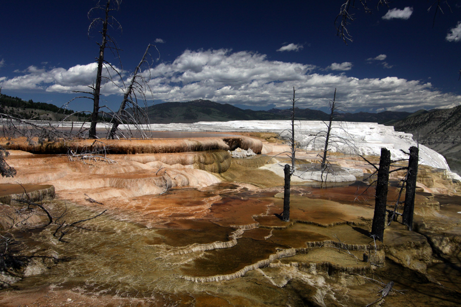 Yellowstone National Park, WY :  : Christopher Davies Photography