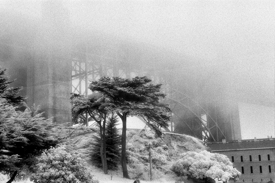 Garden view. The Golden Gate Bridge. Kodak Black & White Infrared Film(C)1995 :  : Christopher Davies Photography